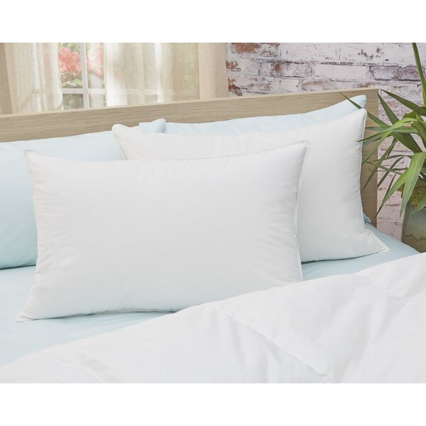Down Pillow (Set of 2) by Alwyn Home