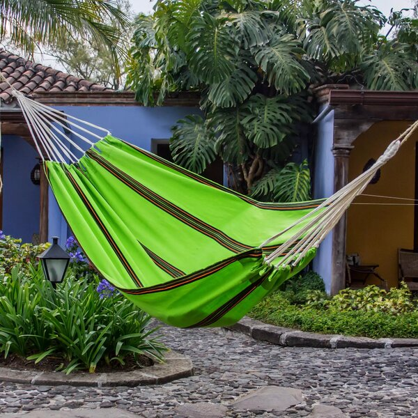 Wilson Tropical Slumber Camping Hammock by Bay Isle Home