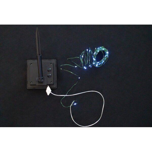 2 Piece Solar Fairy LED Light Set by Hi-Line Gift Ltd.