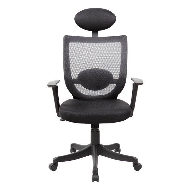 Izabella Ergonomic Mesh Office Chair by Symple Stuff