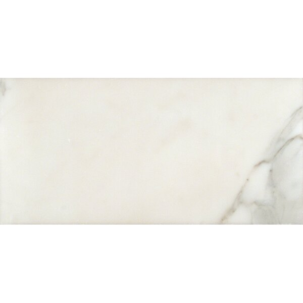 Calacatta 6 x 12 Natural Stone Field Tile in White by MSI