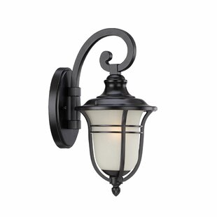 Best Reviews Berryhill Outdoor Wall Lantern By Fleur De Lis Living