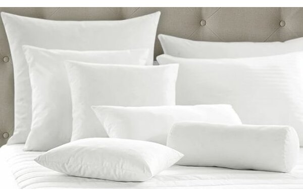 White Super Soft Pillow Insert (Set of 2) by Alwyn Home