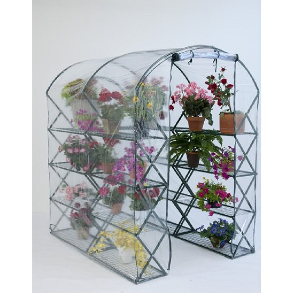 X-Up 4.5 Ft. W x 6.5 Ft. D Greenhouse by Flowerhouse