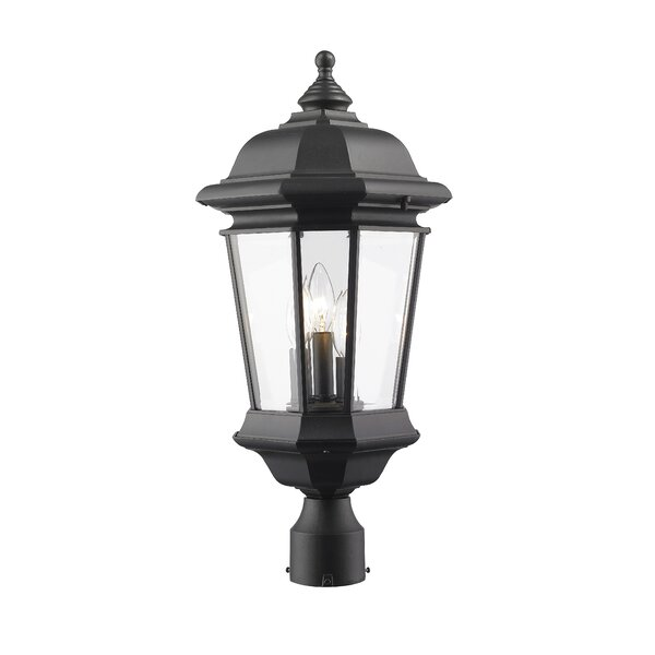 Bibb 3-Light Lantern Head by Fleur De Lis Living