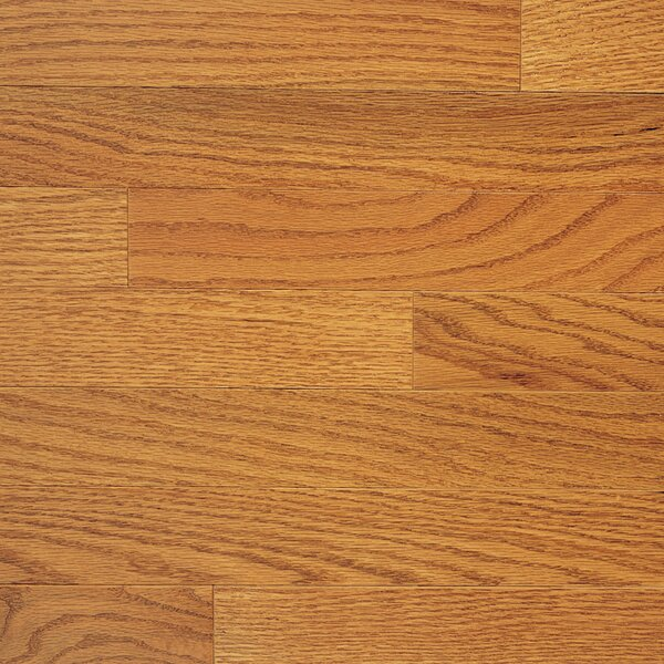Color Plank 3-1/4 Engineered Red Oak Hardwood Flooring in Golden Oak by Somerset Floors