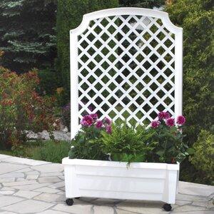 Rectangular Plant Box with Trellis