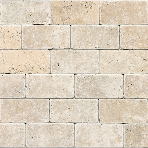 Georgia 3 x 6 Travertine Field Tile in Mediterranean Ivory by Itona Tile