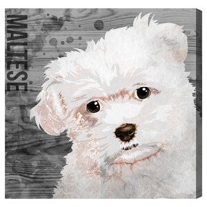 'Love My Maltese' Graphic Art on Wrapped Canvas by Brayden Studio