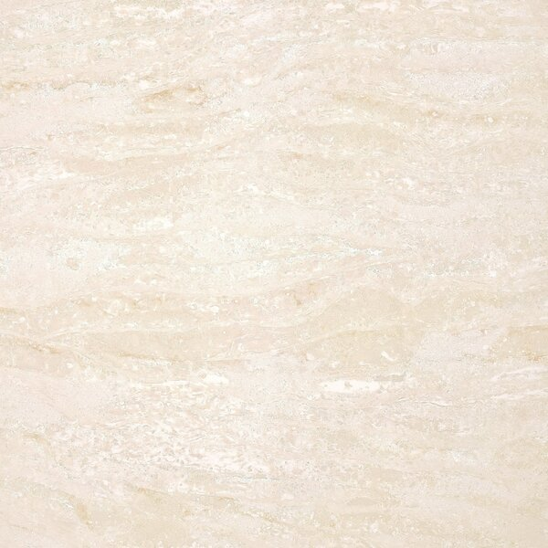 Navona Polished 24 x 24 Porcelain Field Tile in Beige by Multile
