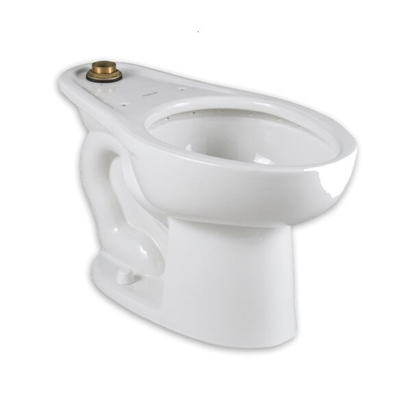 Madera Dual Flush Elongated Toilet Bowl by American Standard