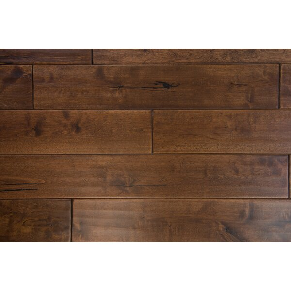 Danube 4-3/4 Solid Birch Hardwood Flooring in Chocolate by Branton Flooring Collection