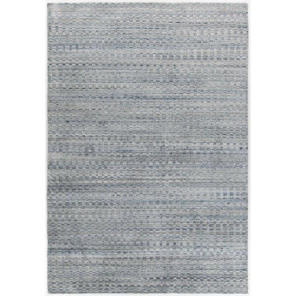 Hernan Hand-Woven Gray Area Rug by Brayden Studio