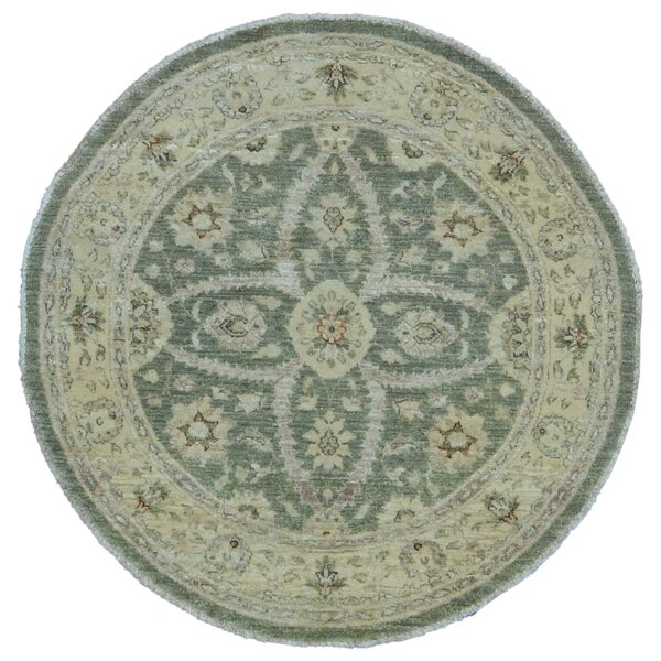 Baron Hand Woven Wool Green/Beige Area Rug by Isabelline