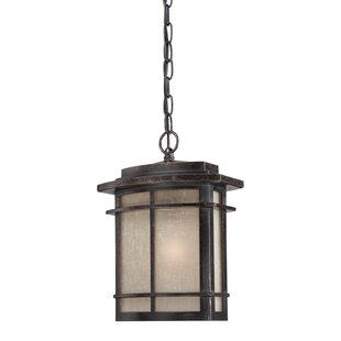 Reviews Womack 1-Light Outdoor Pendant By Three Posts