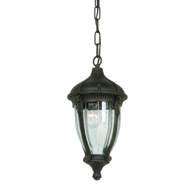 Huntington 1-Light Outdoor Hanging Lantern by Astoria Grand