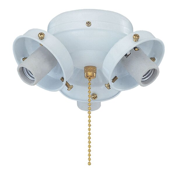 3-Light Branched Ceiling Fan Light Kit by Royal Pacific