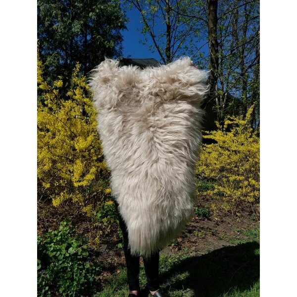 Karthic Genuine Sheepskin White Area Rug by Willa Arlo Interiors