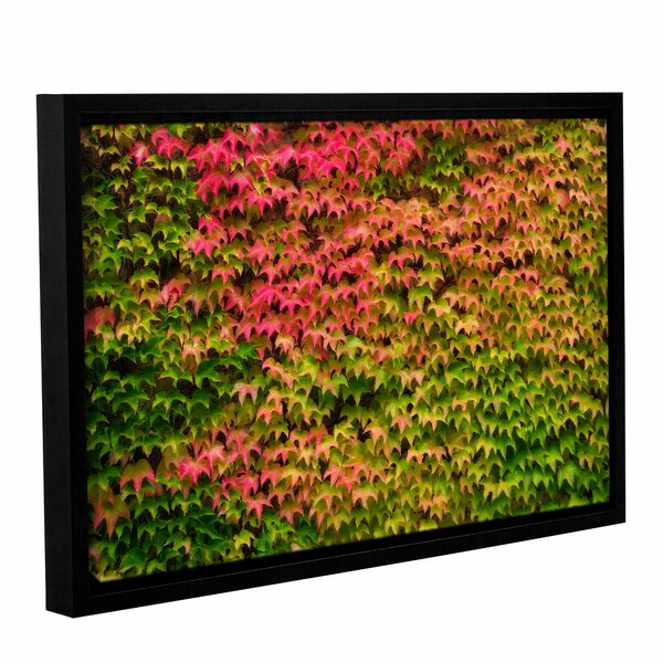 Vines Wall 1 Framed Photographic Print on Wrapped Canvas by Loon Peak
