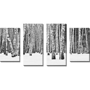 Birch Trees in Winter by 4 Piece Photographic Print on Wrapped Canvas Set by Picture Perfect International