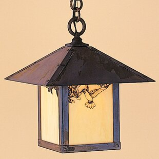 Read Reviews Evergreen 1-Light Outdoor Hanging Lantern By Arroyo Craftsman