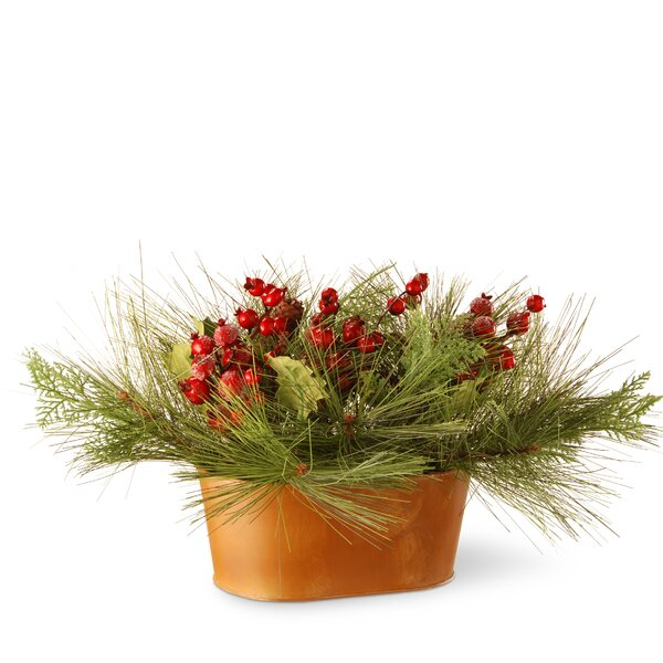 Potted Bristle and Berries Foliage Topiary in Pot by National Tree Co.