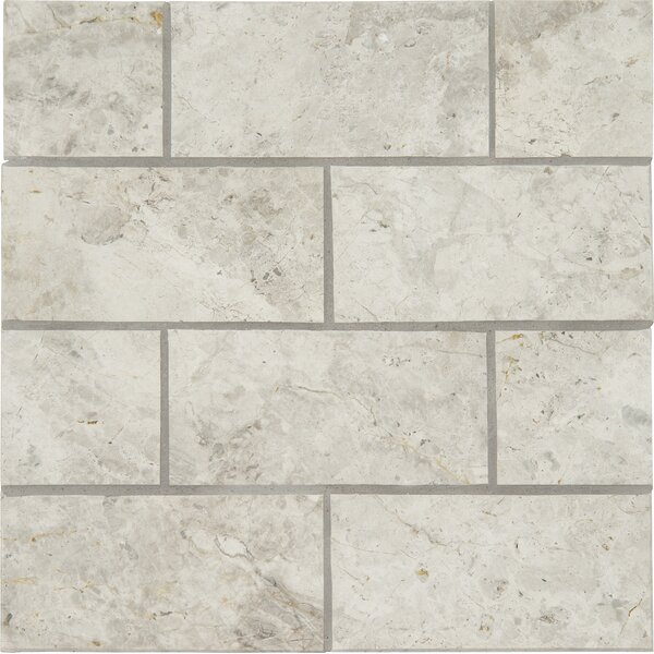 3 x 6 Marble Tile in Tundra Gray by MSI