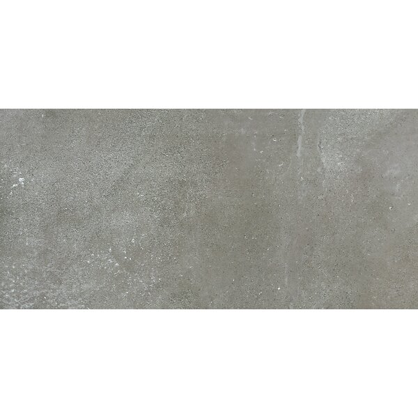 Absolute 18 x 36 Porcelain Field Tile in Cenere by Madrid Ceramics