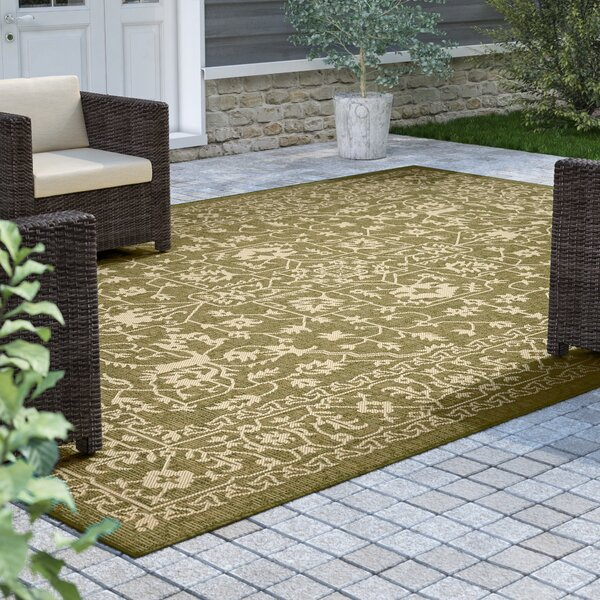 Applecrest Green Outdoor Area Rug by Charlton Home
