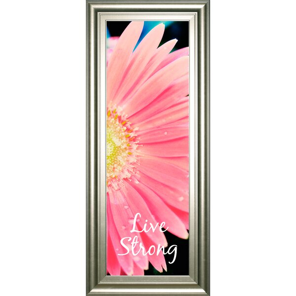 Live Strong Daisy by Susan Bryant Framed Photographic Print by Classy Art Wholesalers
