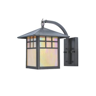 Best 1-Light Outdoor Wall Lantern By Meyda Tiffany