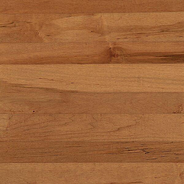 Specialty 3-1/4 Engineered Maple Hardwood Flooring in Maple Tumbleweed by Somerset Floors