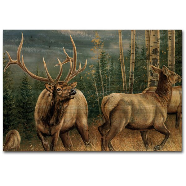 Back Country Elk Painting Print Plaque by WGI-GALLERY