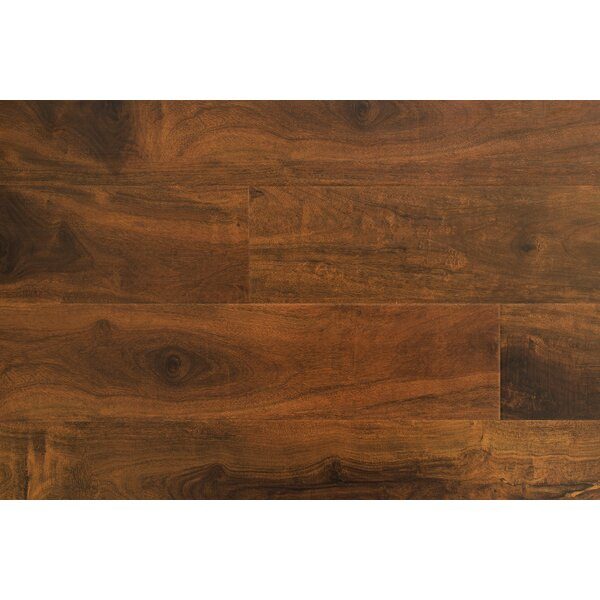 Impact 6 x 48 x 12mm Walnut Laminate Flooring in Macadamian by Dyno Exchange