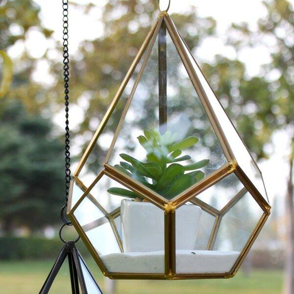 Undecahedron Tear Drop Glass Terrarium by WGV International