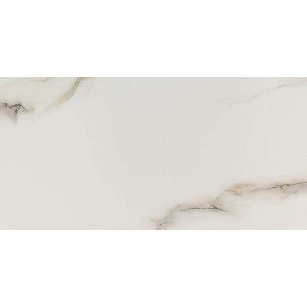 Aria 12 x 24 Porcelain Field Tile in Bianco by MSI
