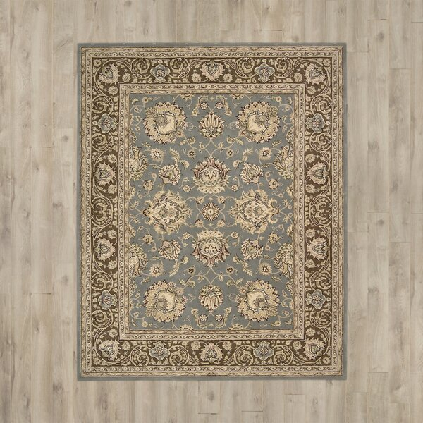 Media Hand-Tufted Blue/Brown Area Rug by Darby Home Co