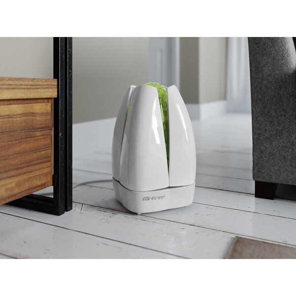 Lotus Portable Filterless Air Purifier by Airfree Products