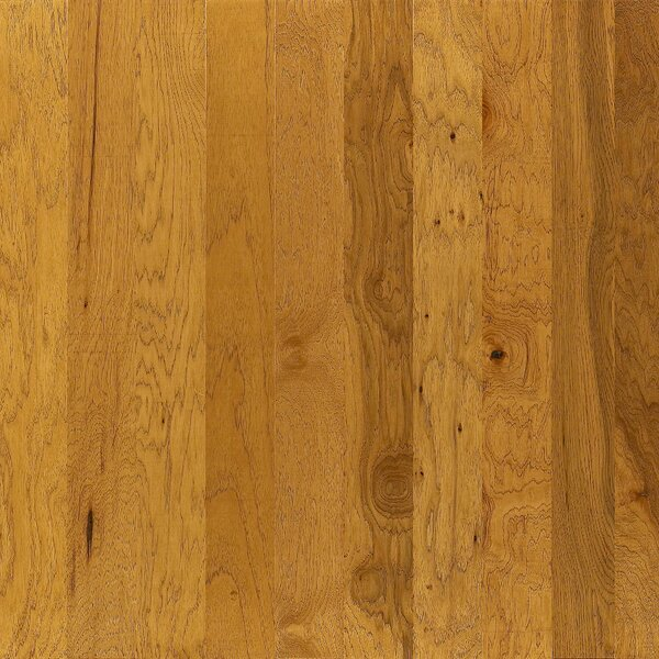Goldfield 5 Engineered Hickory Hardwood Flooring in Ashdown by Shaw Floors