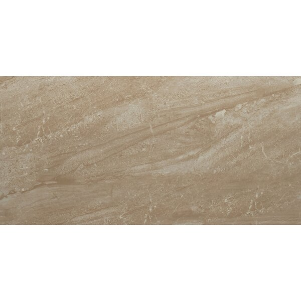 Florentine 12 x 24 Ceramic Field Tile in Nociolla by Daltile