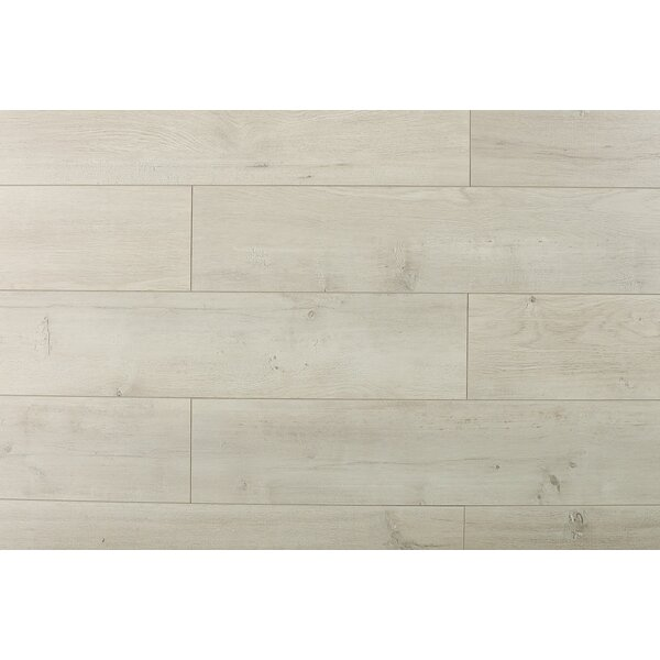 Trini 6.7 x 48 x 12mm Oak Laminate Flooring in Ultra Fresco by Serradon