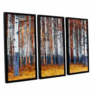 Autumn Forest 3 Piece Framed Photographic Print Set by Red Barrel Studio