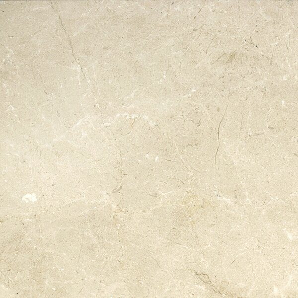 Marble 18 x 18 Field Tile in Crema Marfil Plus by Emser Tile