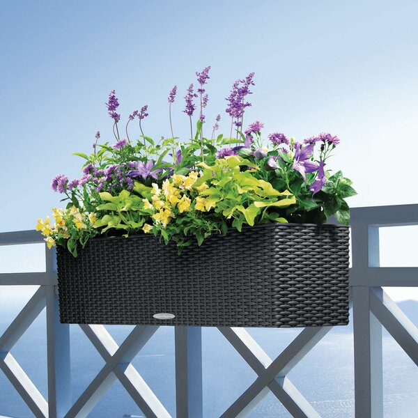 Balconera Cottage Planter Box by Lechuza