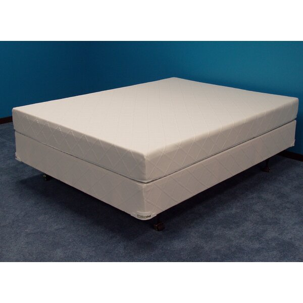 Winners Funny Cide 9 inch Soft-side Waterbed Mattress by Strobel Mattress