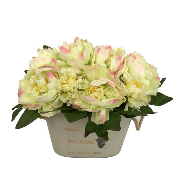 Peonies Floral Arrangement in Beige Pot by Ophelia & Co.