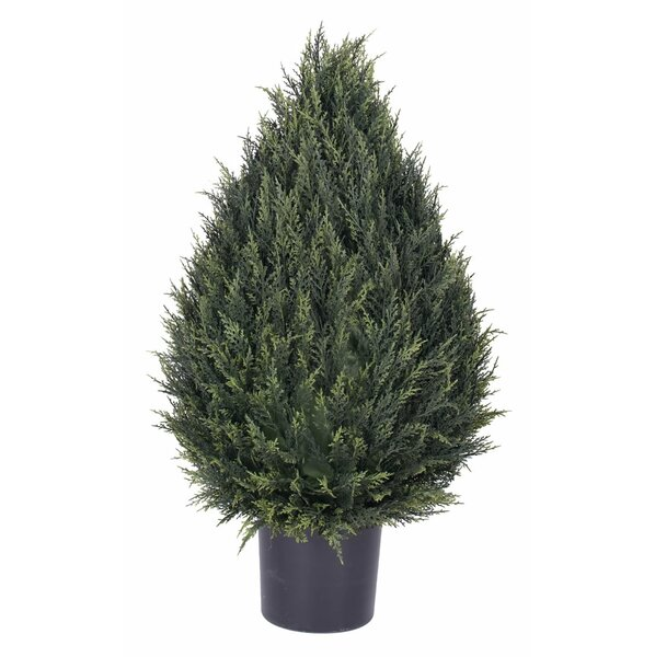 UV Floor Pine Topiary in Pot by Darby Home Co