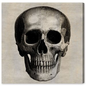 Skull by Oliver Gal Graphic Art on Canvas by Oliver Gal