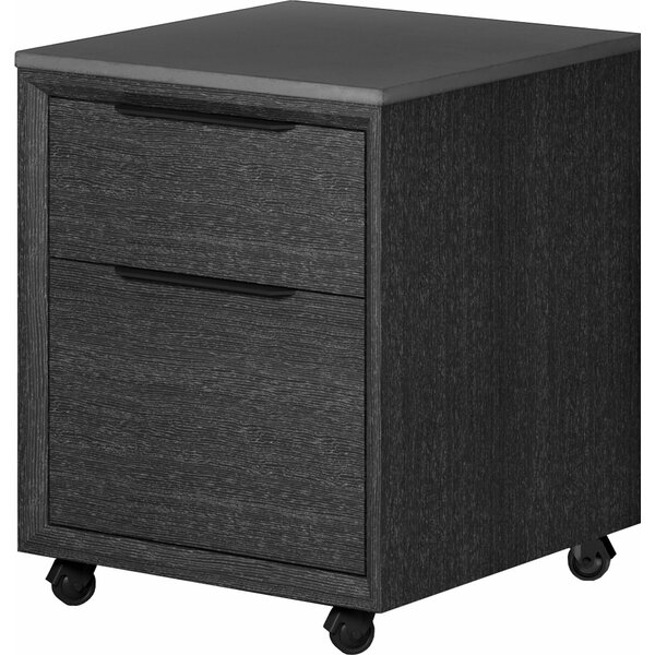 Salaam 2-Drawer Mobile Vertical Filing Cabinet