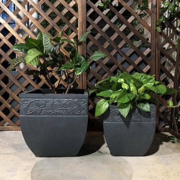 Josef Cube Carved 2-Piece Concrete Pot Planter Set by Charlton Home